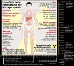 effets_radioactivite_sur_corps-humain_800_1_.jpg