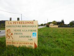 2013-04-25_CAN84_Marche-antinucleaire-pour-la-vie_vers_Bollene_15.jpg