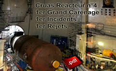 Cruas_Meysse_enceinte_confinement_reacteur_4_grand_carenage_generateur_vapeur_Flyer_21_07_2014.jpg