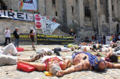 2013-07-15_CAN84_Die-in_Avignon_palais-des-papes_01_chris.jpg