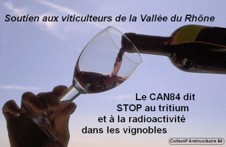 Dans_les_vignobles.jpg.jpg