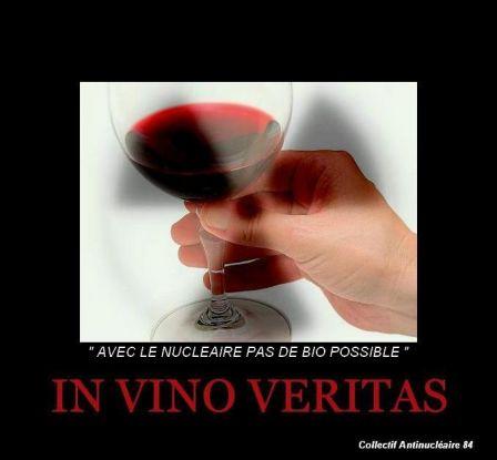 IN_VINO_VERITAS.jpg.jpg