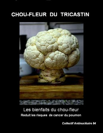Le_chou-fleur.jpg.jpg