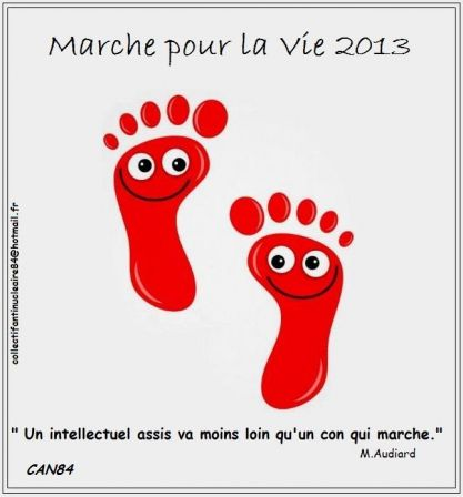 2013-06-16_CAN84_Les-cons