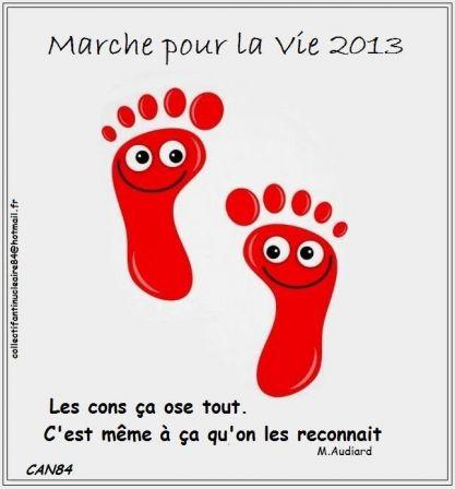 2013-06-16_CAN84_Les-cons-ça-ose- tout