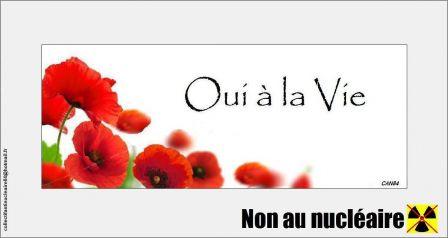 2013-06-16_CAN84_Oui-a-la-Vie