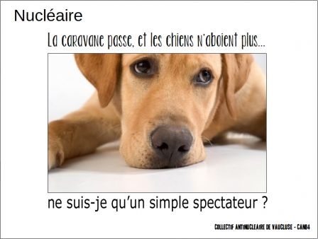 2015-14-05_CAN_Spectateur