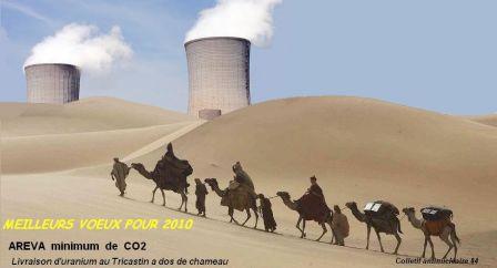 Uranium_a_dos_de_chameau.jpg