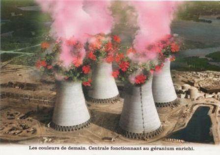 2012-01-09_geranium enrichi