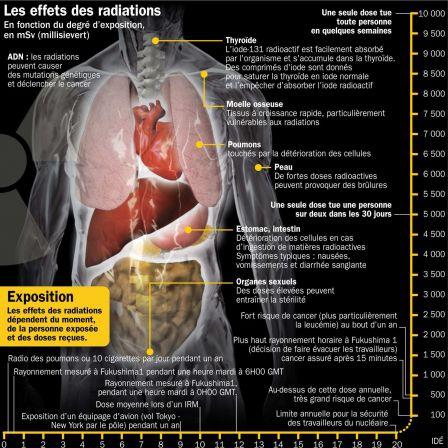 26_impact-radioactivité-sur-organes-humains.jpg
