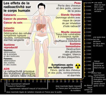 effets_radioactivite_sur_corps-humain_1417.jpg